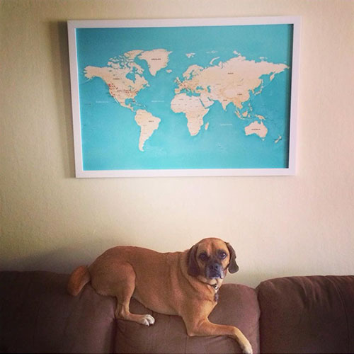 travel-map-with-dog